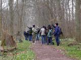 Short-toed Treecreeper 2004, twitchers