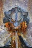 La fontaine à tête de Lion