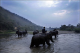 Laos-Pachyderms and People-a five week journey.