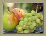 Summer fruits version 2