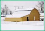 A nice change, a yellow barn.