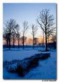 Canon_EOS_5D_Mark_II_20100107_175740_IMG_8170-Edit-Edit-Edit.jpg