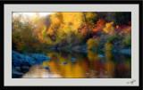 Autumn Colors 44