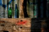 February 11 2010: One Green Bottle