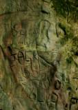 April 2  2010: Rural Graffiti