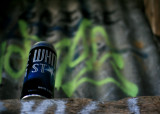 May 24 2010: Cider Den