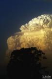 Smokey Thunderhead