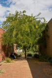 Monbulk Lunchtree