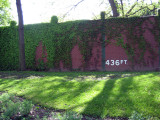 Forbes Field - 3