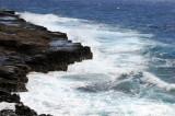Hawaii 2008-031