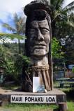 Hawaii 2008-067