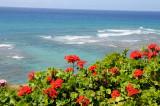 Hawaii 2008-076