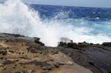 Hawaii 2008-090