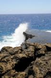 Hawaii 2008-096