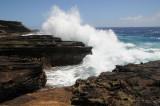Hawaii 2008-100