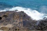 Hawaii 2008-103