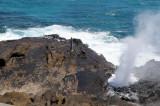 Hawaii 2008-105