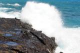 Hawaii 2008-139