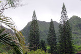 Hawaii 2008-143