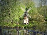 windmillMol1246.JPG