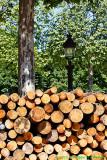 Archives : stock de bois - Wooden stock