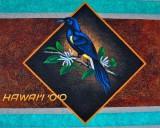 hawai'i 'o'o