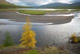 autumn is coming / the Amnundakta river emptying into Ajan lake