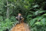 Thailand. Khao Sok.  Elephant tracking. Kinda selfportrait