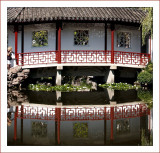 ChineseGardenReflection8050748.jpg