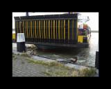 Boats004-Maassluis