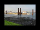 Boats012-Maassluis