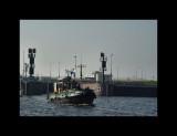 Boats016-IJmuiden