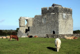 Ruins of the Kilmacduagh monastery