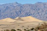 Sand dunes on Mesquite Flat