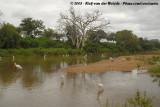 The Bird River