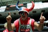 Houston Texans superfan