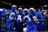 Kentucky Wildcats fans