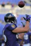 Baltimore Ravens tight end Todd Heap
