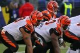 Cincinnati Bengals QB Carson Palmer