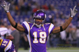 Minnesota Vikings WR Sidney Rice
