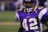 Minnesota Vikings DB Darren Sharper