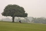 Near Raj Ghat
