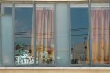 window___doors