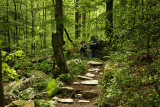 Arkansas On the trail.jpg
