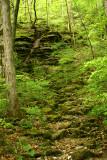 Arkansas rock outcrop.jpg