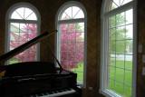 raining to the music