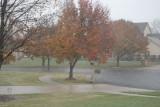 Seasons First Snow