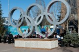 Huge Attraction - Olympic Rings