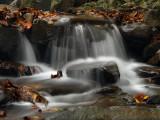 wHunting Creek-A.jpg