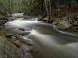 wHunting Creek in Spring1 P4261193.jpg